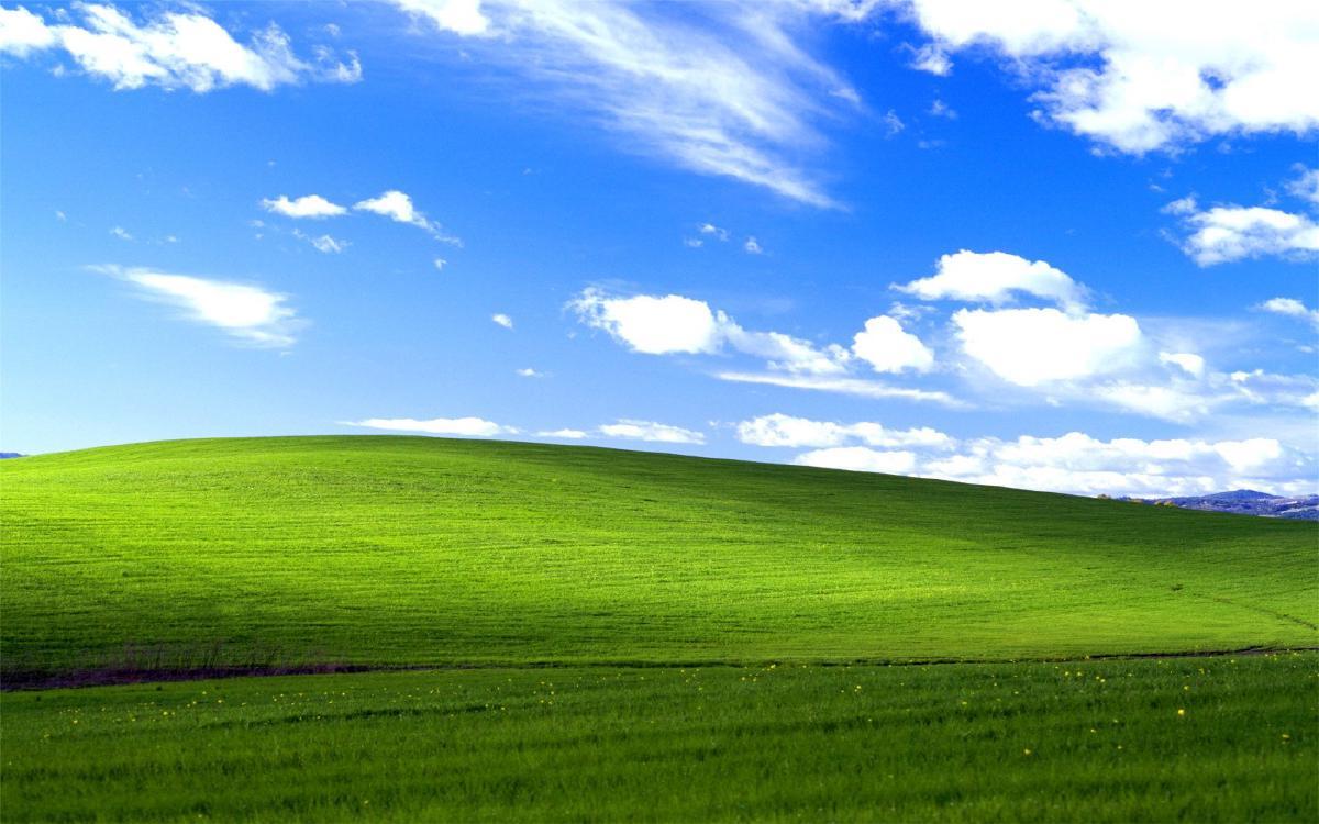 Windows 95 Default Wallpaper